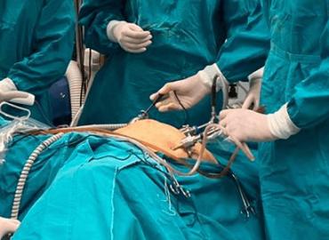 Chirurgia laparoscopica (endoscopica)